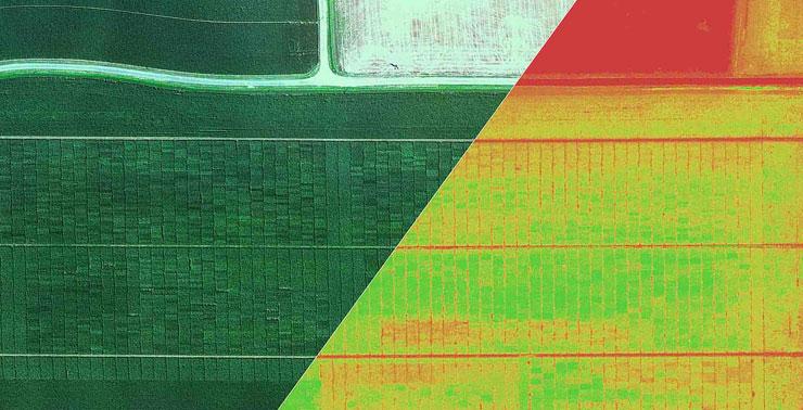 Ileron - Agricoltura di precisione